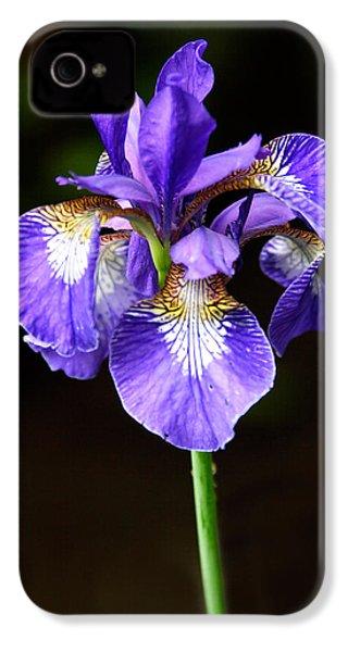 Purple Iris IPhone 4 Case by Adam Romanowicz