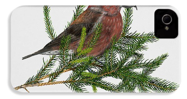 Red Crossbill -common Crossbill Loxia Curvirostra -bec-crois Des Sapins -piquituerto -krossnefur  IPhone 4 / 4s Case by Urft Valley Art