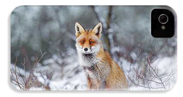 Red Fox Blue World IPhone 4 / 4s Case by Roeselien Raimond