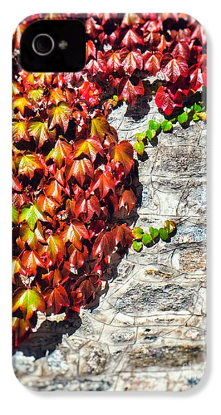 IPhone 4 Case featuring the photograph Red Ivy On Wall by Silvia Ganora