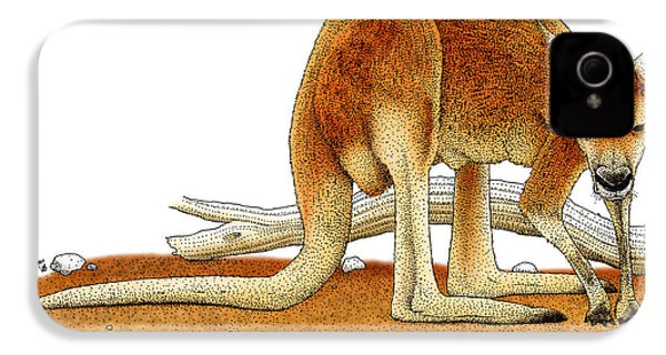 Red Kangaroo IPhone 4 Case by Roger Hall