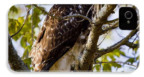 IPhone 4 Case featuring the photograph Red Tailed-hawk by Ricky L Jones