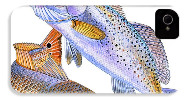 Redfish Trout IPhone 4 Case by Carey Chen