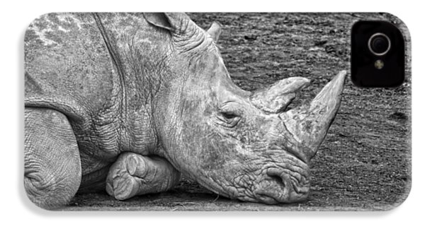 Rhinoceros IPhone 4 Case by Nancy Aurand-Humpf