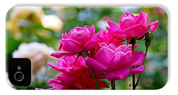Rittenhouse Square Roses IPhone 4 / 4s Case by Rona Black