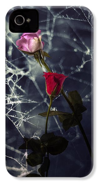 Roses With Coweb IPhone 4 Case by Joana Kruse