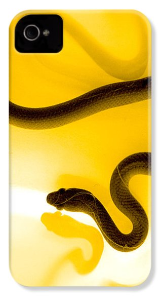 S IPhone 4 Case by Holly Kempe