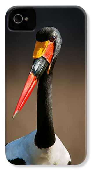 Saddle-billed Stork Portrait IPhone 4 / 4s Case by Johan Swanepoel