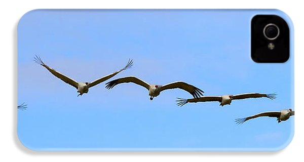 Sandhill Crane Flight Pattern IPhone 4 / 4s Case by Mike Dawson