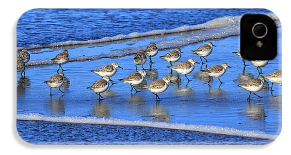 Sandpiper Symmetry IPhone 4 Case by Robert Bynum