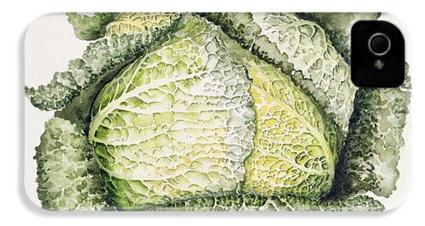 Savoy Cabbage  IPhone 4 Case by Alison Cooper