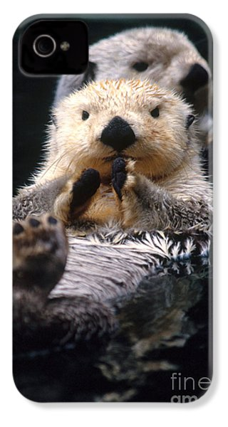 Sea Otter Pup IPhone 4 Case by Mark Newman