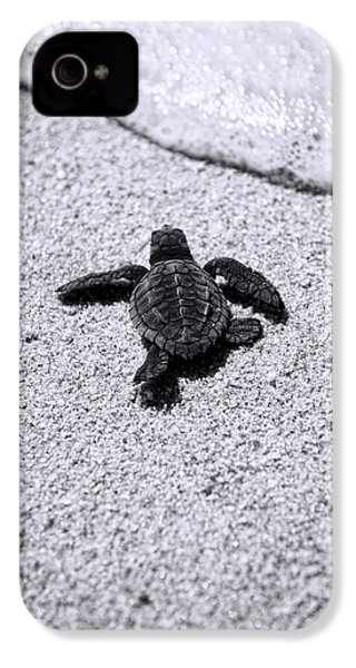 Sea Turtle IPhone 4 Case by Sebastian Musial