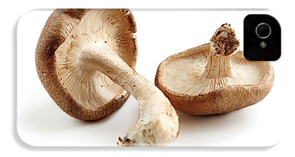 Shiitake Mushrooms IPhone 4 / 4s Case by Elena Elisseeva