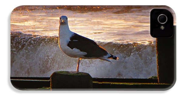 Sittin On The Dock Of The Bay IPhone 4 Case by David Dehner