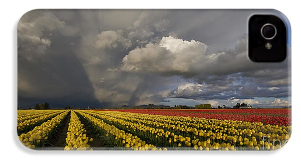 Skagit Valley Storm IPhone 4 / 4s Case by Mike Reid