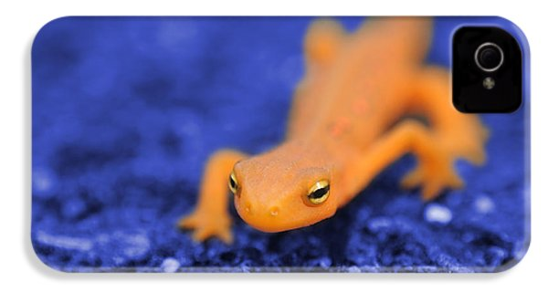 Sly Salamander IPhone 4 / 4s Case by Luke Moore
