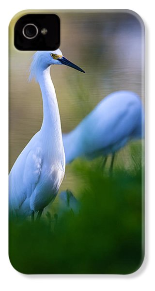 Snowy Egret On A Lush Green Foreground IPhone 4 Case