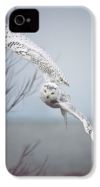 Snowy Owl In Flight IPhone 4 Case by Carrie Ann Grippo-Pike
