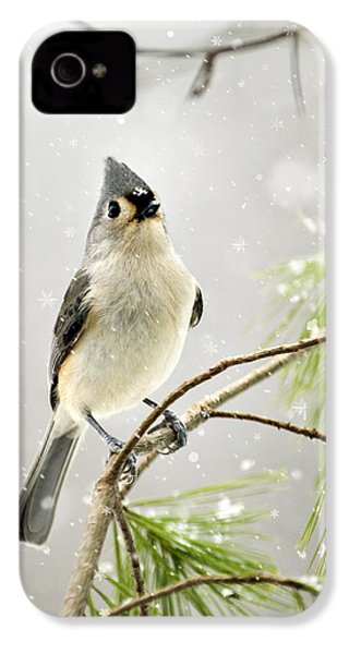 Snowy Songbird IPhone 4 Case by Christina Rollo