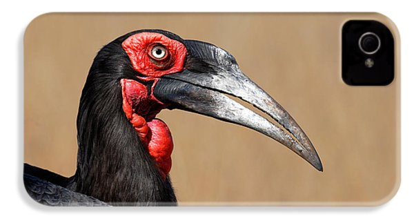 Southern Ground Hornbill Portrait Side View IPhone 4 Case by Johan Swanepoel