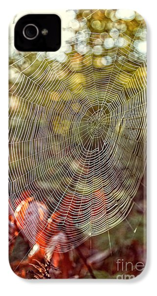 Spider Web IPhone 4 Case by Edward Fielding