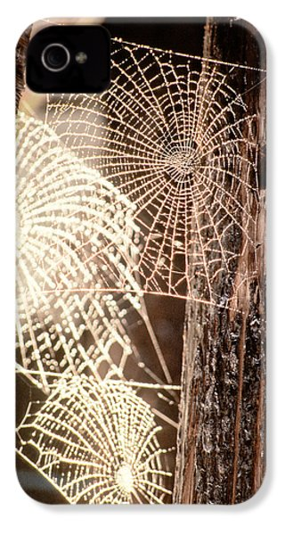 Spider Webs IPhone 4 / 4s Case by Anonymous