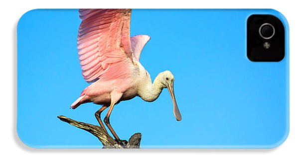 Spoonbill Flight IPhone 4 Case by Mark Andrew Thomas