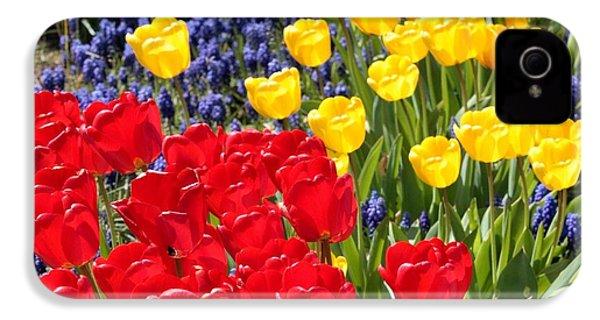 Spring Sunshine IPhone 4 Case
