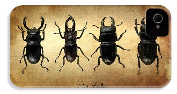 Stag Beetles IPhone 4 Case by Mark Rogan