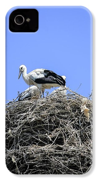 Storks Nesting IPhone 4 Case by Photostock-israel