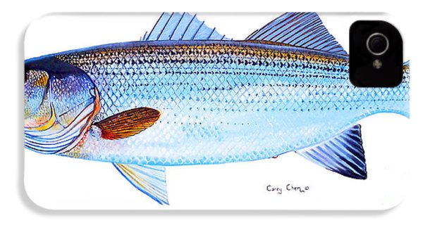 Striped Bass IPhone 4 Case