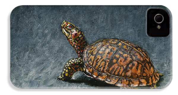 Study Of An Eastern Box Turtle IPhone 4 Case by Rob Dreyer