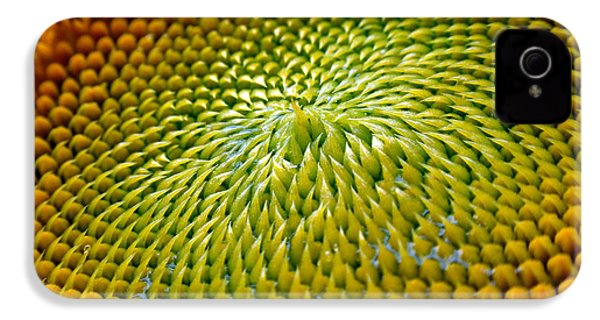 Sunflower  IPhone 4 / 4s Case by Christina Rollo