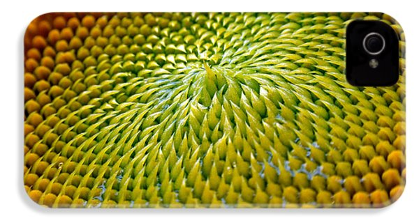 Sunflower  IPhone 4 Case by Christina Rollo