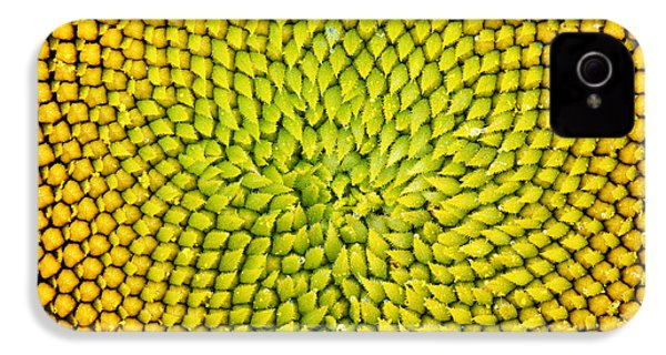 Sunflower Middle  IPhone 4 Case by Tim Gainey