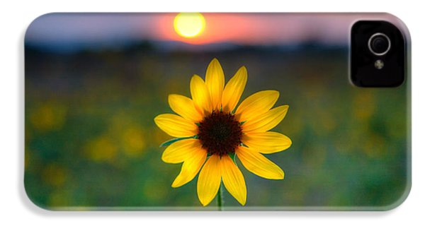 Sunflower Sunset IPhone 4 Case by Peter Tellone