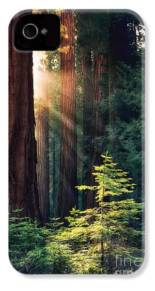 Sunlit From Heaven IPhone 4 Case