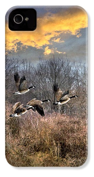 Sunset Geese IPhone 4 Case