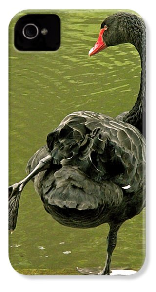 Swan Yoga IPhone 4 / 4s Case by Rona Black