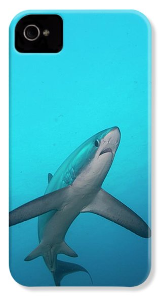 Swimming Thresher Shark IPhone 4 / 4s Case by Scubazoo