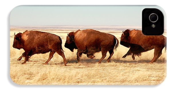 Tatanka IPhone 4 Case by Todd Klassy