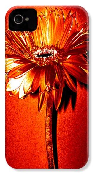Tequila Sunrise Zinnia IPhone 4 Case by Sherry Allen