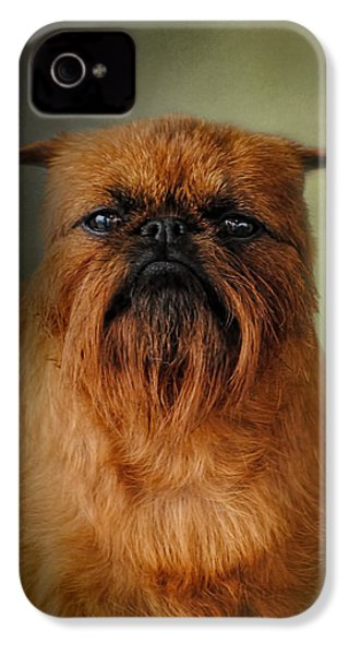 The Brussels Griffon IPhone 4 Case by Jai Johnson