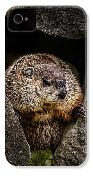 The Groundhog IPhone 4 Case by Bob Orsillo