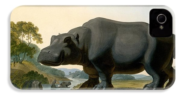 The Hippopotamus, 1804 IPhone 4 Case by Samuel Daniell