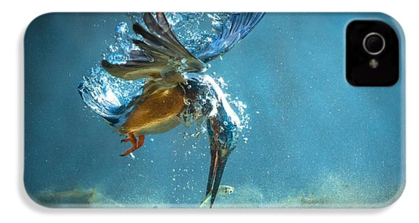 The Kingfisher IPhone 4 Case