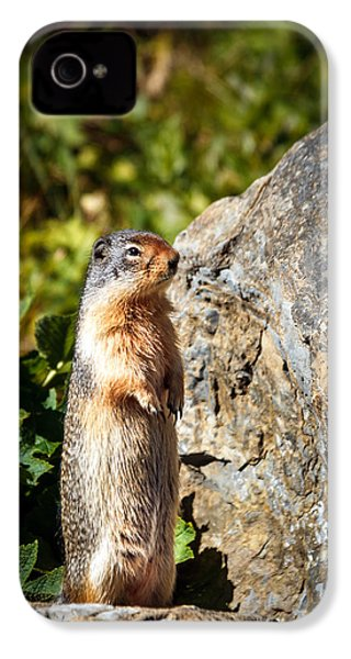The Marmot IPhone 4 Case