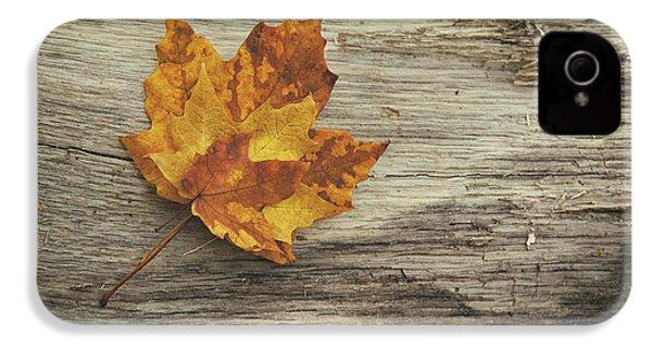 Three Leaves IPhone 4 Case by Scott Norris