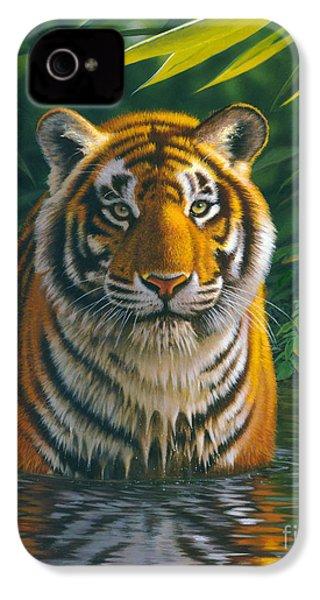 Tiger Pool IPhone 4 Case by MGL Studio - Chris Hiett